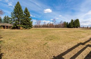 Photo 46:  in Edmonton: Zone 56 House for sale : MLS®# E4241034