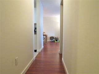 """Photo 14: 215 7751 MINORU Boulevard in Richmond: Brighouse South Condo for sale in """"CANTERBURY COURT"""" : MLS®# R2278350"""