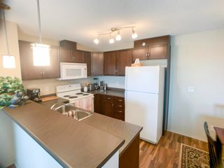 Photo 13: 414 6070 SCHONSEE Way in Edmonton: Zone 28 Condo for sale : MLS®# E4248308