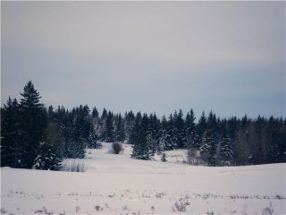 Photo 2: 314 55504 Rge Rd 13: Rural Lac Ste. Anne County Rural Land/Vacant Lot for sale : MLS®# E4213581