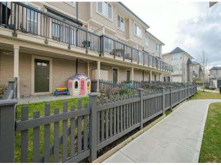 """Photo 13: 79 7938 209 Street in Langley: Willoughby Heights Townhouse for sale in """"Red Maple Park"""" : MLS®# F1413572"""