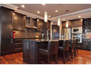 Photo 5: 206 CHAPALA Point SE in CALGARY: Chaparral Residential Detached Single Family for sale (Calgary)  : MLS®# C3573278
