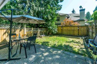 "Photo 19: 8 8289 121A Street in Surrey: Queen Mary Park Surrey Townhouse for sale in ""KENNEDY WOODS"" : MLS®# R2281618"