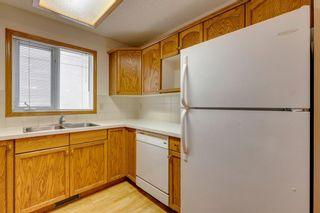 Photo 15: 924 Mckinnon Drive NE in Calgary: Mayland Heights Semi Detached for sale : MLS®# A1122625