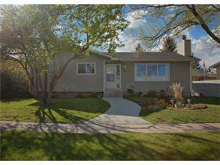 Photo 1: 74 OKOTOKS Drive: Okotoks House for sale : MLS®# C4116084