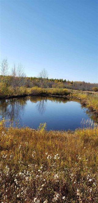 Photo 9: 10 57126 Range Road 12: Rural Barrhead County Rural Land/Vacant Lot for sale : MLS®# E4241768