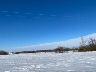 Photo 4: RR 2: Rural Wetaskiwin County Rural Land/Vacant Lot for sale : MLS®# E4228849