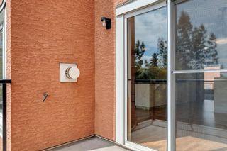 Photo 31: 204 10105 95 Street in Edmonton: Zone 13 Townhouse for sale : MLS®# E4246553