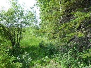 Photo 4: 1 Rural Address in Barrier Valley: Lot/Land for sale (Barrier Valley Rm No. 397)  : MLS®# SK861319