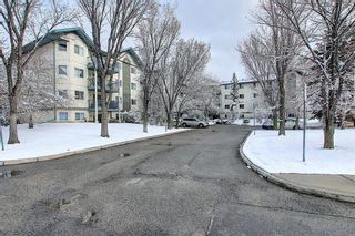 Photo 2: 110 11 DOVER Point SE in Calgary: Dover Apartment for sale : MLS®# A1118273