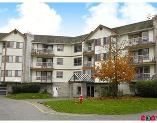 """Photo 1: 116 5710 201ST Street in Langley: Langley City Condo for sale in """"White Oaks"""" : MLS®# F2728346"""