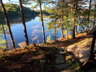 Photo 4: 16 1500 Fish Hatchery Road in Muskoka Lakes: House (Bungalow) for sale : MLS®# X5267124