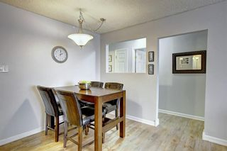 Photo 8: 8 6827 Centre Street NW in Calgary: Huntington Hills Apartment for sale : MLS®# A1133167