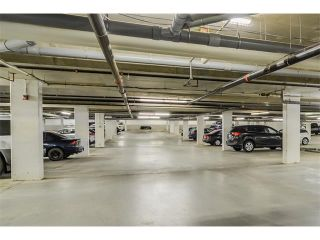 Photo 25: 208 60 ROYAL OAK Plaza NW in Calgary: Royal Oak Condo for sale : MLS®# C4033173
