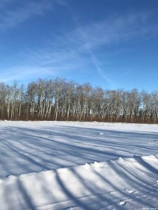 Photo 8: 230 7th Avenue Northeast in Preeceville: Lot/Land for sale : MLS®# SK850978