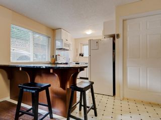 Photo 18: 258 Richmond Ave in : Vi Fairfield East House for sale (Victoria)  : MLS®# 863286