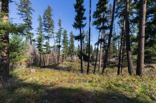 Photo 13: 3281 Hall Road, in Kelowna: Vacant Land for sale : MLS®# 10232100