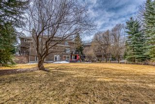 Photo 47: 334 Pumpridge Place SW in Calgary: Pump Hill Detached for sale : MLS®# A1094863