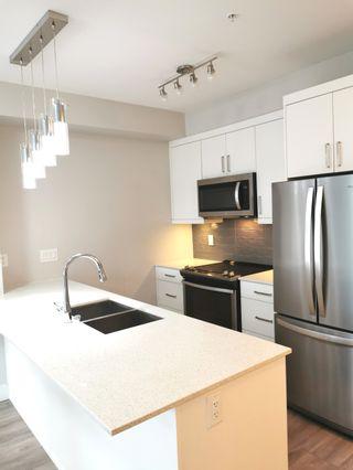 Photo 3:  in Delta: Annieville Condo for sale (N. Delta)  : MLS®# R2556116