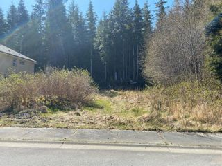 Photo 2: 6280 Hunt St in : NI Port Hardy Land for sale (North Island)  : MLS®# 873037