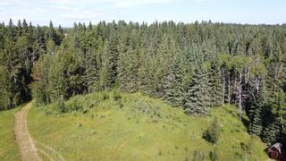 Photo 29: 5-31539 Rge Rd 53c: Rural Mountain View County Land for sale : MLS®# A1024431
