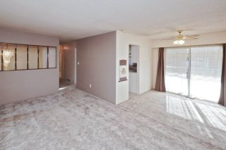 Photo 6: 21260 COOK Avenue in Maple Ridge: Southwest Maple Ridge House for sale : MLS®# R2530636