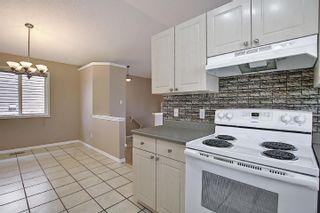 Photo 14: 16044 38 street NW in Edmonton: Zone 03 House for sale : MLS®# E4248402
