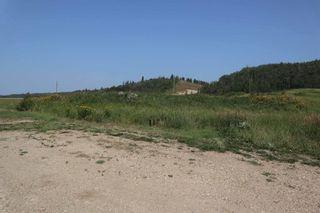 Photo 39: 23509 Twp 484: Rural Leduc County House for sale : MLS®# E4258040