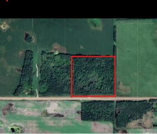 Photo 2: RGE RD 223 Twp Rd 594: Rural Thorhild County Rural Land/Vacant Lot for sale : MLS®# E4256609