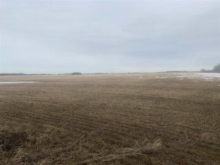 Photo 2: Rg. Rd. 252 Twp. 564: Rural Sturgeon County Rural Land/Vacant Lot for sale : MLS®# E4235322