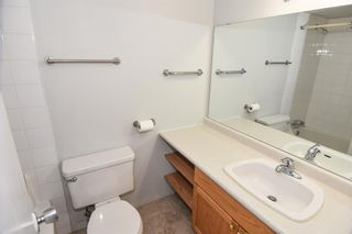 Photo 11: 417 30 Mchugh Court NE in Calgary: Mayland Heights Apartment for sale : MLS®# A1099356