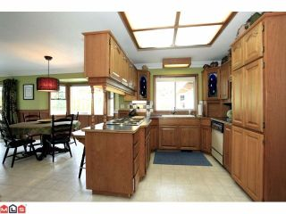 Photo 4: 24887 55A Avenue in Langley: Salmon River House for sale : MLS®# F1221846