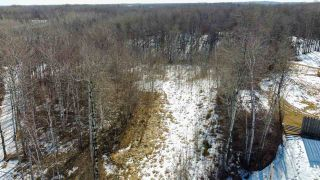 Photo 3: 54419 R.R. 14: Rural Lac Ste. Anne County Rural Land/Vacant Lot for sale : MLS®# E4233036