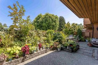 """Photo 31: 108 46210 CHILLIWACK CENTRAL Road in Chilliwack: Chilliwack E Young-Yale Townhouse for sale in """"CEDARWOOD"""" : MLS®# R2602109"""