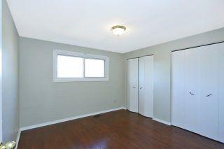 Photo 7: Renovated Rare 4 Bedroom Semi