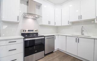 Photo 11: 6427 176 Avenue NW in Edmonton: Zone 03 House for sale : MLS®# E4224782