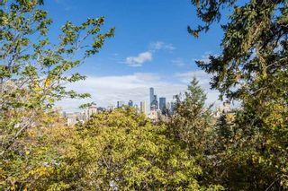 Photo 32: 10004 87 Avenue in Edmonton: Zone 15 House for sale : MLS®# E4228424