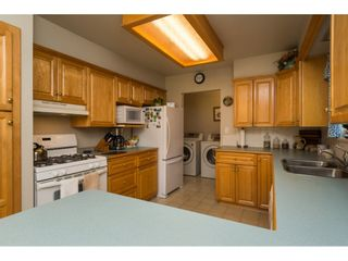 """Photo 7: 17725 20 Avenue in Surrey: Hazelmere House for sale in """"NCP 4"""" (South Surrey White Rock)  : MLS®# R2184388"""