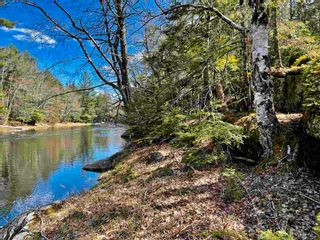 Photo 7: Lot VH-1 Highway 10 in Meisners Section: 405-Lunenburg County Vacant Land for sale (South Shore)  : MLS®# 202111350