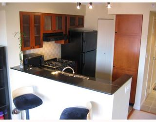 Photo 2: 204 55 ALEXANDER Street in Vancouver: Downtown VE Condo for sale (Vancouver East)  : MLS®# V666128