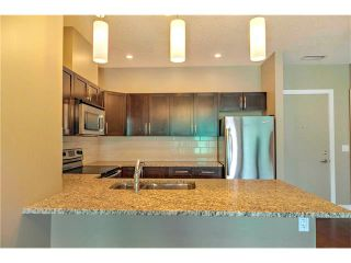 Photo 12: 315 1899 45 Street NW in Calgary: Montgomery Condo for sale : MLS®# C4115653