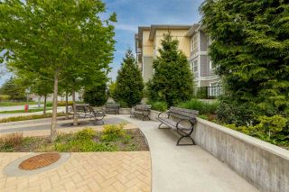 """Photo 33: 407 5020 221A Street in Langley: Murrayville Condo for sale in """"Murrayville house"""" : MLS®# R2572110"""