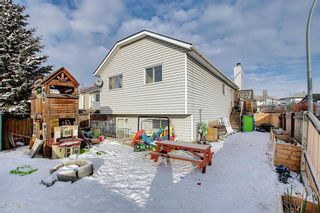 Photo 28: 163 Erin Meadow Green SE in Calgary: Erin Woods Detached for sale : MLS®# A1077161