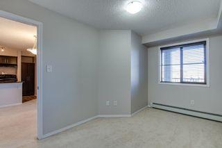 Photo 24: 420 274 MCCONACHIE Drive in Edmonton: Zone 03 Condo for sale : MLS®# E4265134