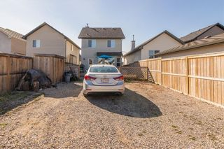Photo 26: 38 CRANBERRY Close SE in Calgary: Cranston Detached for sale : MLS®# C4297367