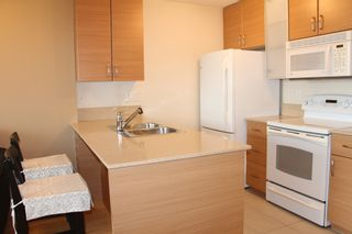 Photo 10:  in Vancouver: Yaletown Condo for rent (Vancouver West)  : MLS®# AR002A