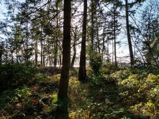 Photo 3: 161 Colvilleton Trail in : Isl Protection Island Land for sale (Islands)  : MLS®# 870953