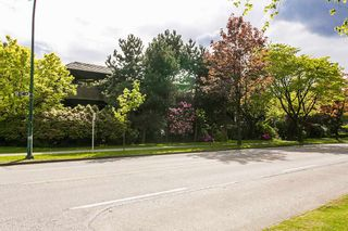 "Photo 20: 302 1720 W 12TH Avenue in Vancouver: Fairview VW Condo for sale in ""TWELVE PINES"" (Vancouver West)  : MLS®# R2079599"