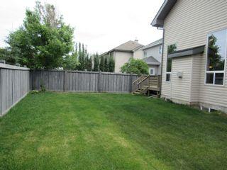 Photo 43: 3216 TREDGER Close in Edmonton: Zone 14 House for sale : MLS®# E4252965