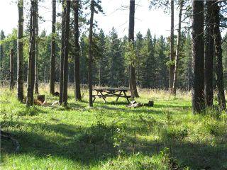 Photo 5: WEST OF BOTTREL in COCHRANE: Rural Rocky View MD Rural Land for sale : MLS®# C3492220